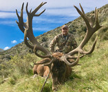 Red stag trophy for Nathan in New Zealand