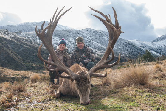 Hunting New Zealand Red Stag Trips - Scott Wall