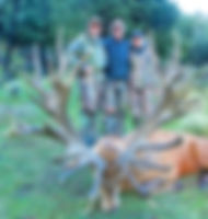Howard_Stein_500_SCI_Red_Stag, hunted with Nigel andMyriam Birt. Red stag hunting, Red stags New Zealand, New Zealand red stag prices, Trophy red stag hunts, Trophy hunting New Zealand, New Zealand guided hunts, New Zealand hunt packages, Red stag hunting in New Zealand, Elk, Deer hunting, Hunting, White-tailed deer, Deer, Trophy hunting, Antler, New Zealand Hunting Guides, New Zealand Red Stag, New Zealand Trophy Hunting, Trips New Zealand Hunting, Hunting New Zealand Red, Zealand Canterbury Westland Hunting, New Zealand Canterbury Westland, Westland Hunting Trout Fishing, Hunting Trout Fishing Guide, Canterbury Westland Hunting Trout, Hunting New Zealand Guided, Zealand Red Stag Hunting, Red Stag Hunting Trips, Red Stag Hunting New, New Zealand Hunting Trips, New Zealand Guided Fishing, Fishing Hunting New Zealand, New Zealand Guided Hunting Trips, Hunting Trips New Zealand, Pacific Safaris New Zealand, Stag Hunting Trips New, New Zealand Hunting Directory, Stag Hunting New Zealand,