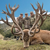Red Stag Backcountry New Zealand Outfitters Guides
