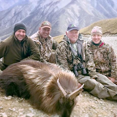 Tahr hunts in New Zealand - Gallen