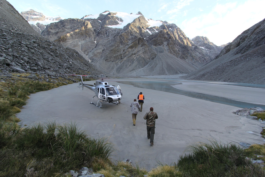 Hunting in Tahr country, Southern Alps New Zealand