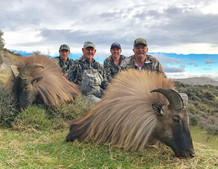 Trophy tahr hunting in New Zealand Brent and Paul