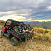 Tahr hunting access in New Zealand via 4wd