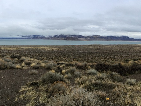 The calm before the storm… Pyramid Lake (partially) reopens tomorrow!