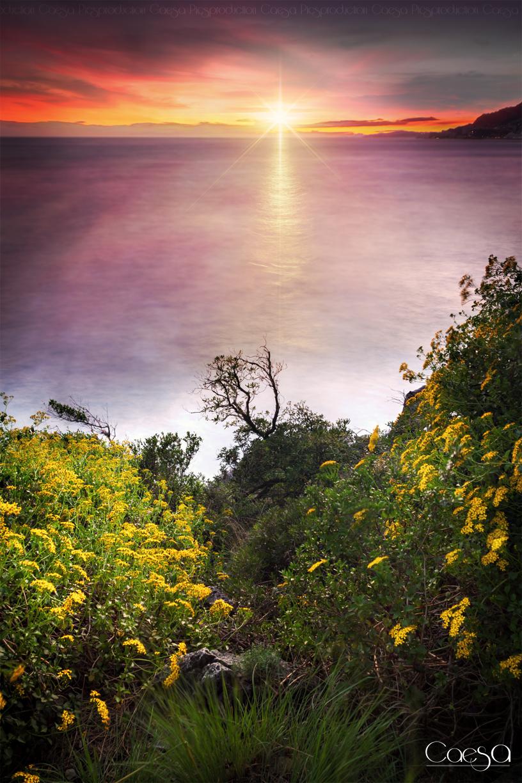 Sunset Roquebrune Cap Martin
