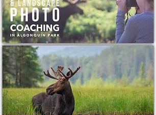 photo_2020-08-31_17-40-33.jpg