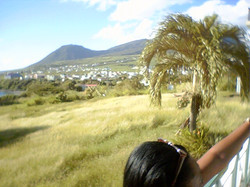 ST. Kitts Project