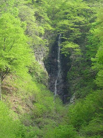 九十の滝3.JPG