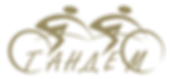 Logo_tandem_png (1).png