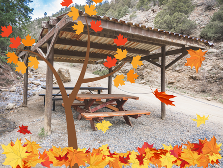 Stop by the Phoenix to View the Colorado Fall Colors!