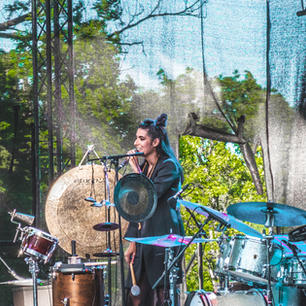 Wildbirds and Peacedrums / Lyse Netter 2018