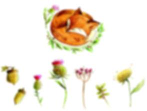FoxDeco.jpg