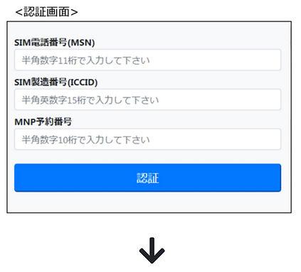 スクリーンショット 2020-08-09 2.53.47.jpg