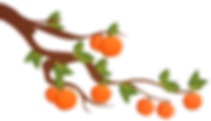 MF-Mid-autumn-bg-orange tree-L.png