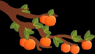 MF-Mid-autumn-bg-orange tree-L.png