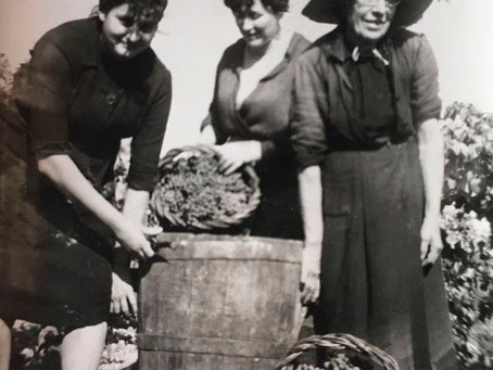 Les dones i la pagesia