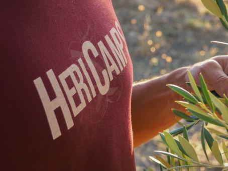 Hericamps: Ecologia i sostenibilitat. T'endús una part de la nostra història