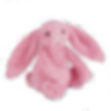 jellycat bunny .png