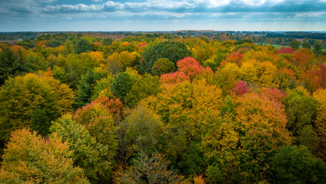 Fall-Colors-Aerial-Photography-Michigan