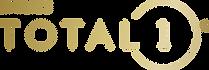 logo_DT1_Gradient_RGB.png