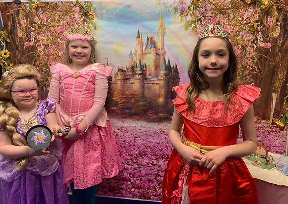 Calling all Princesses Party (4/5)