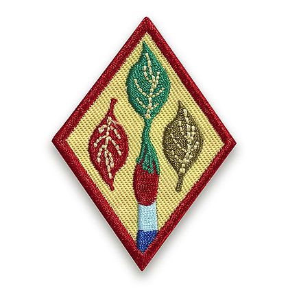 Cadette Outdoor Art Apprentice Badge (4/13)