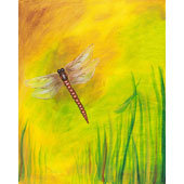 Paint 'n Party @ The Studio - Dragonfly (7/12)