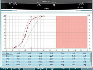 Speech - Graph - Wavefile.jpg