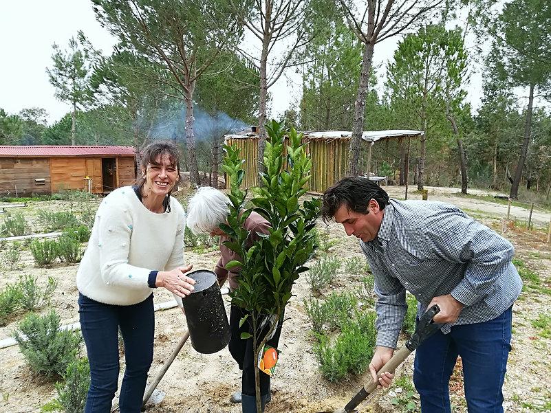 Dia Internacional da Floresta - o que fa