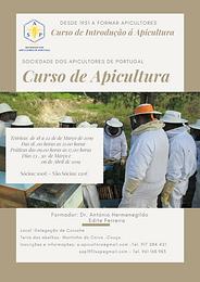 Curso de Apicultura, conhecimentos fundamentais a biologia da abelha e as técnicas de maneio