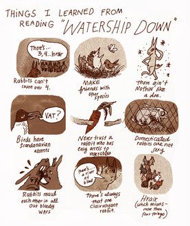 WATERSHIPDOWN WRAP UP