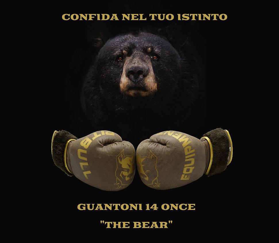 PITBULL the bear .jpg