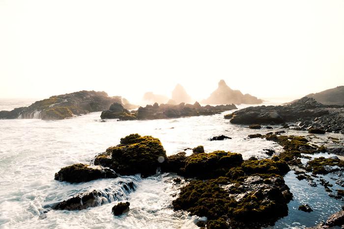 Die Flucht der Krabben | 3 Fotos