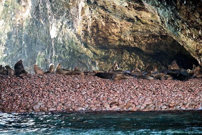 Galapagos für Arme   3 Fotos
