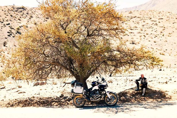 Pause in der Wüste | 2 Fotos