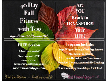 Transform your life in 40 days with these 4 elements