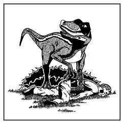 raptor-01.jpg