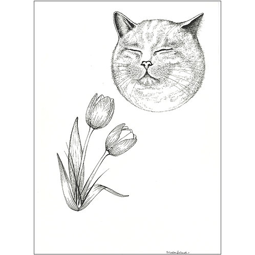 'Cat Is God' by Madison Salopek