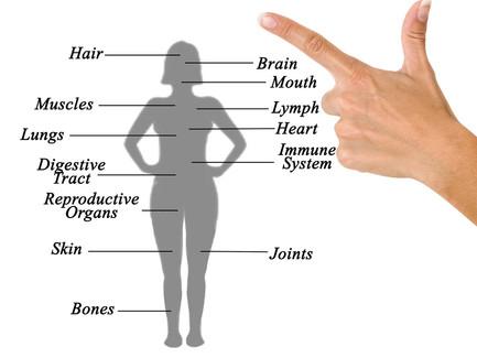 מה קורה בזמן לחץ בגוף שמקשה על הקליטה להריון