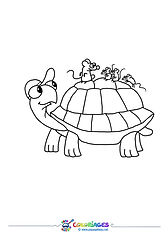 PGcolor_tortue02.jpg