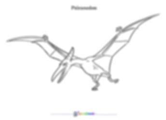 color_pteranodon.jpg