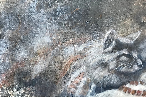 'Cat on a Grey Day'