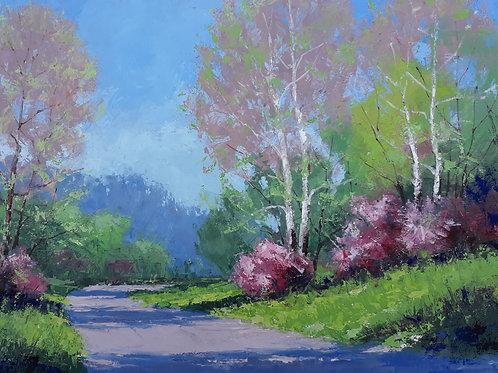 'Valley Spring'