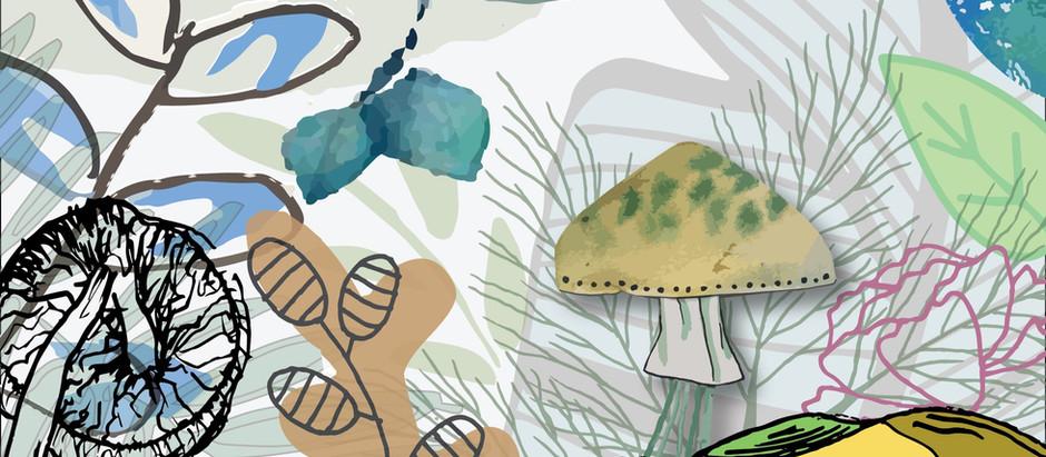 Students create Botanist Biotiles© for Agile Acoustics