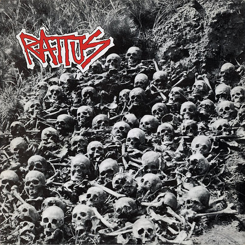 Cd Rattus Rattus
