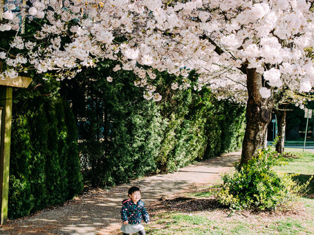 What to wear for your cherry blossoms photo shoot?