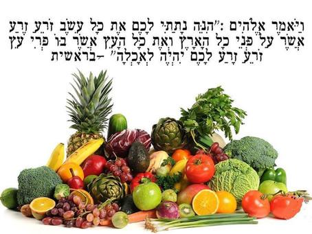 """הקשר בין תזונה ליוגה, הבריאות הטבעית והרמב""""ם"""