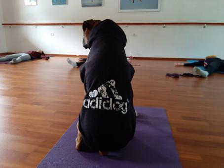 פשוט להיות. תרגול מדיטציה ויוגה בבוקר, תובנות לחיים.
