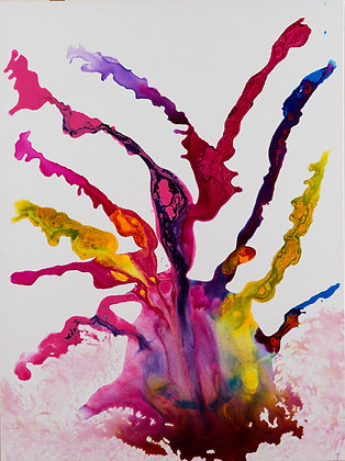 The Rainbow Spider-Abstract on White-30x40